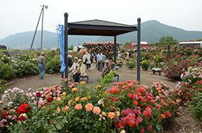 ばら祭り開会式07