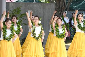 ハワイアン02